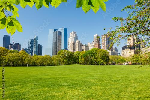 Carta da parati Central park, New York
