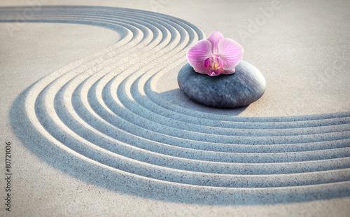 Foto auf Gartenposter Orchideen Orchidee auf Stein im Sand 2