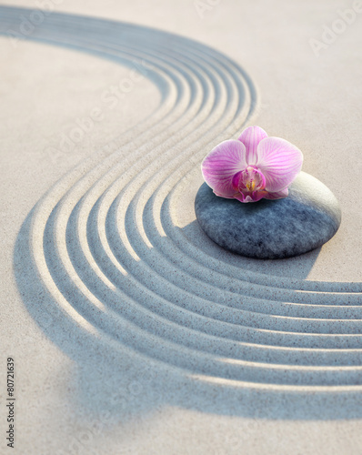 Foto op Plexiglas Stenen in het Zand Orchidee auf Stein im Sand 1