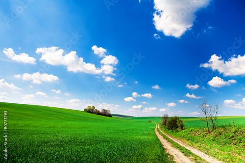 Spoed Foto op Canvas Groene Green Field