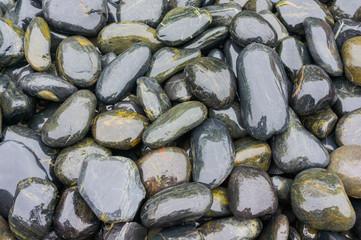 Panel Szklany Hintergrund Kieselsteine in dunklen Grüntönen für Fußmassage