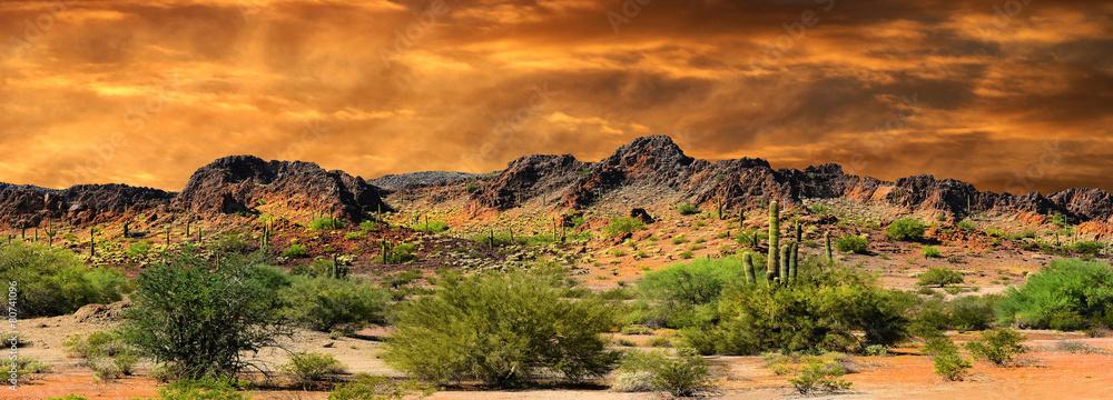 Fototapeta New Mexico Border