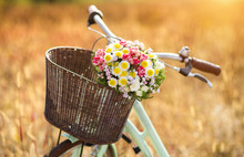 Vintage Bicycle With Basket Fu...