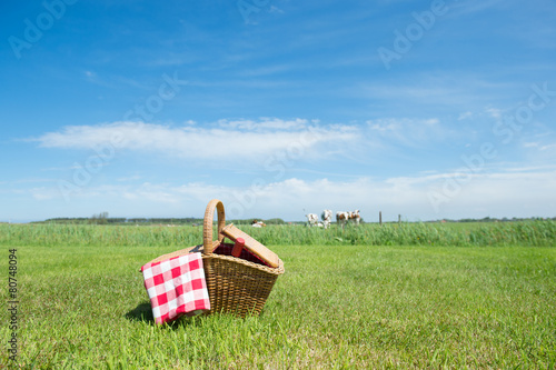 Türaufkleber Picknick Picnic basket in the country