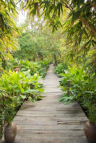 entrance gate to tropical garden