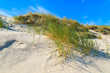 Grass on dune on beautiful Baltic Sea beach near Leba, Poland