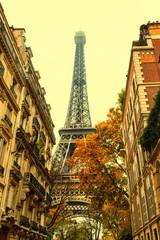 FototapetaAutumn in Paris