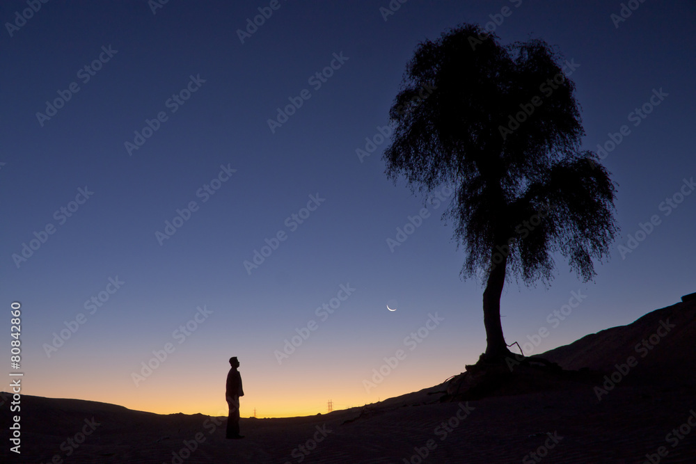 Fototapety, obrazy: Silhouette of a man standing alone near a tree