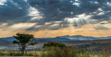 Fototapeta Sawanna - Skies of Africa
