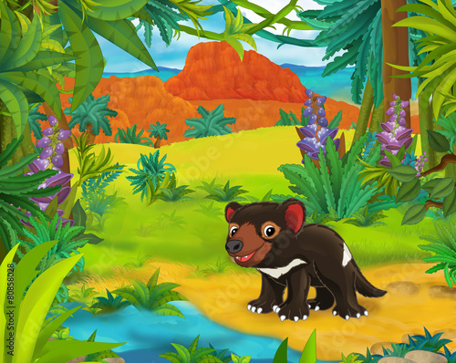 Spoed Fotobehang Kinderkamer Cartoon scene - wild america animals - tasmanian devil - illustration for the children