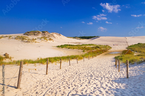 Fototapeta Wydmy moving-dunes-park-near-baltic-sea-in-leba-poland