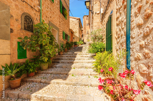 Canvas Prints Narrow alley Street in old Fornalutx mountain village, Majorca island
