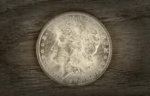 Old Silver Dollar