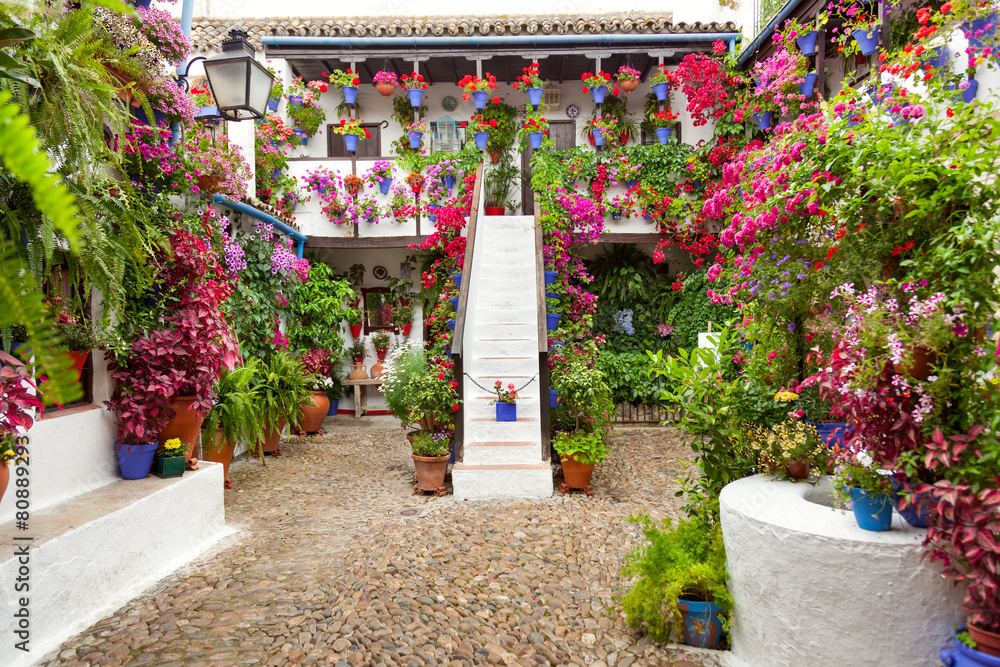 Fototapeta Courtyard with Flowers decorated  - Patio Fest, Spain, Europe