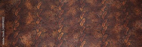 Fotografía  Pelle texture