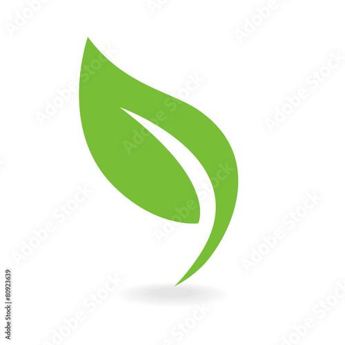 Photo Eco icon green leaf