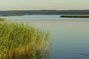Fototapeta Do hotelu Jezioro Żarnowieckie