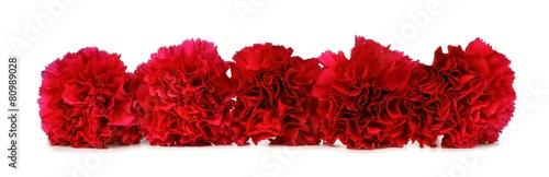Border arrangement of red carnation flowers Wallpaper Mural