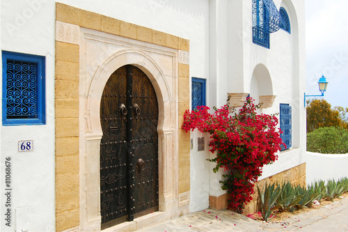 Photo sur Toile Tunisie The door in Tunisia