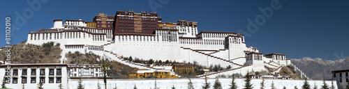 Fotografie, Obraz  Potala Palace, Tibet