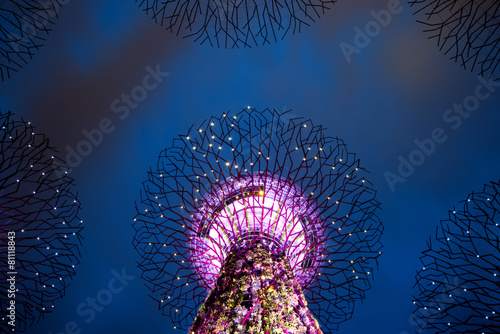Photo  Supertree Grove at Gardens by the Bay, SIngapore