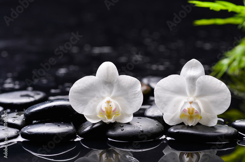 Foto auf Gartenposter Spa white orchid and green leaf with therapy stones