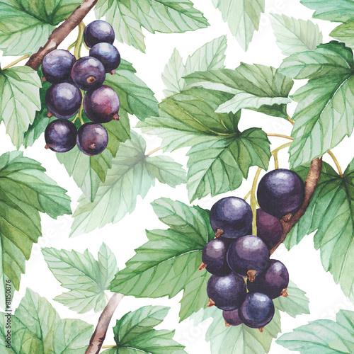 Seamless pattern with watercolor black currants illustration - 81150876