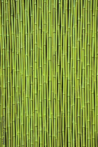 Poster Bambou Green bamboo. Picture can be used as a background