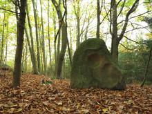 Menhir Stone Skull, Czech Republic