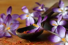 Dried Saffron Spice And Crocus Flowers
