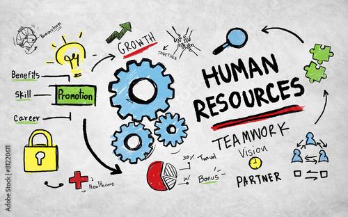 Human Resources Employment Job Teamwork Vision Concept Wallpaper Mural