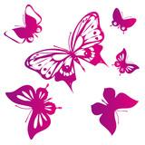 Fototapeta Buterfly - butterflies design