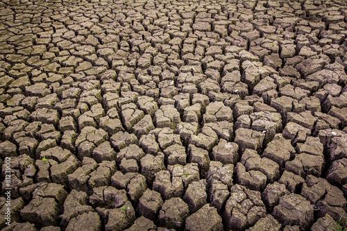 Cuadros en Lienzo soil arid , season water shortage