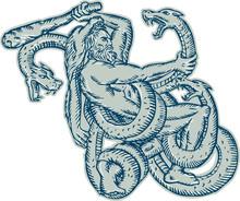 Hercules Fighting Hydra Club