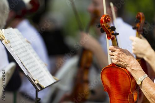 Fotografie, Obraz  Symphony Orchestra