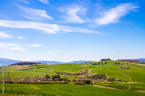 Poster Hill tuscan landscape, view of the green Val D'Orcia