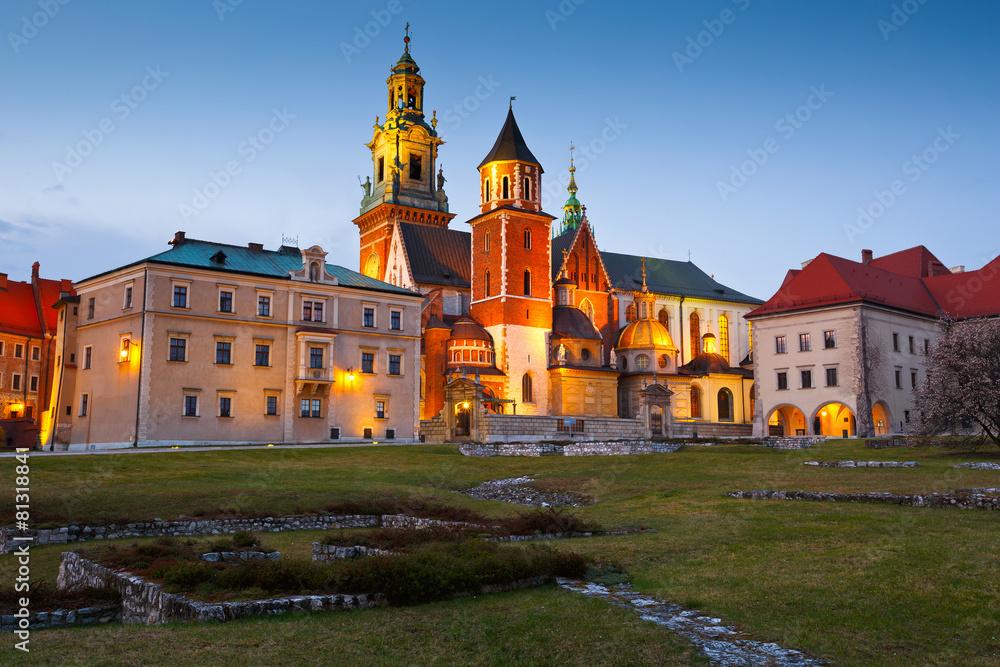 Fototapety, obrazy: Royal castle Wawel in city of Krakow, Poland.