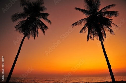 Poster Corail Beautiful Beach at Sunset Backgrounds