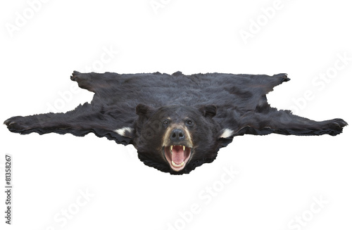 Low angle view of a bearskin rug isolated on white Wallpaper Mural