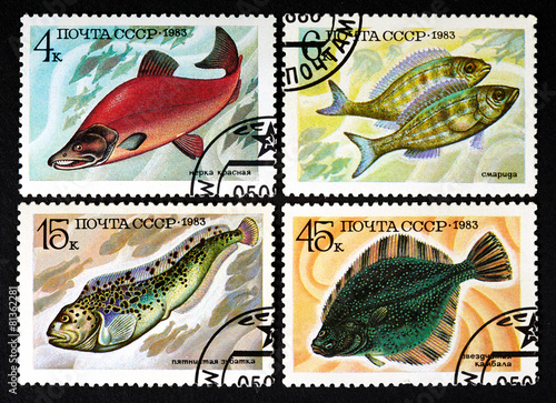 Valokuva  series of stamps printed in USSR, shows fishes, 1983