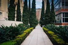 Gardens Along A Walkway At Mag...