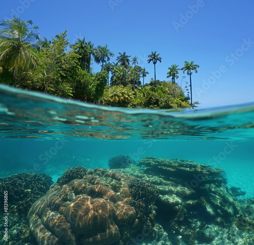 Spoed Foto op Canvas Eiland Split shot of tropical island and coral reef