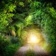 canvas print picture - Tunnel aus Bäumen führt ins Licht