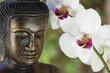 buddha orchidée
