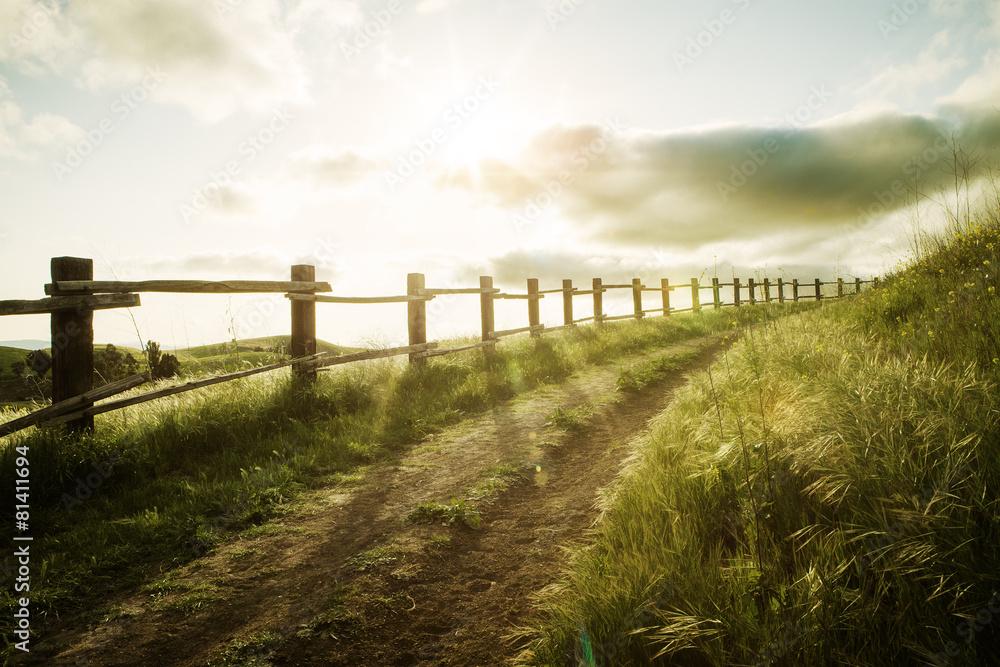 Fototapeta sunset path