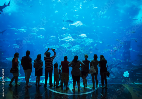 Aquarium in Atlantis Hotel, with silhouettes of people Fototapet