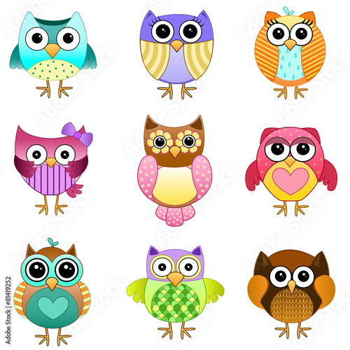 Photo Stands Birds, bees Set of Cute Vector Owls