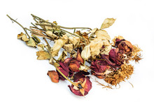 Dried Roses And Chrysanthemums Flowers Isolated On White Backgro