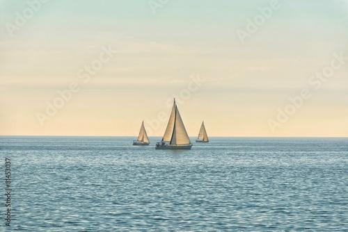 Staande foto Zeilen Sail of a sailing boat