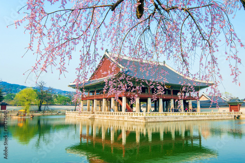Gyongbokgung Palace with cherry blossom in spring,Korea Poster